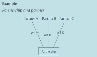Diagram of example: Partnership and partner